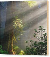 Majestic Fantasy Wood Print