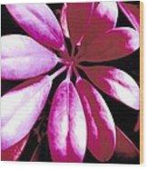 Majestic Leaves Wood Print