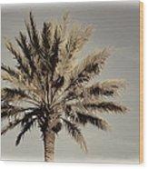 Majestic Palm Wood Print