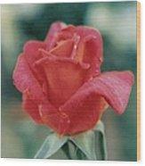 Majestic Red Rose Wood Print
