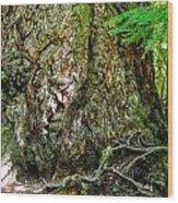 Majestic Spirit Collection 1 Wood Print