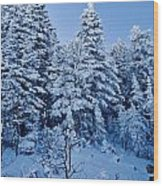 Majestic Winter Wonderland Wood Print