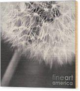 make a wish III Wood Print