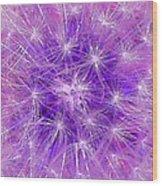 Make A Wish In Purple Wood Print