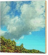 Makena Beach Maui Wood Print