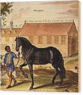 Makomilia, A Turk, Led By A Negro Wood Print