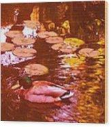 Malard Duck On Pond 3 Wood Print