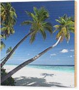 Maldives 05 Wood Print by Giorgio Darrigo
