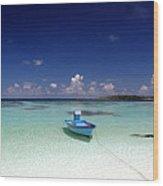 Maldives 09 Wood Print by Giorgio Darrigo