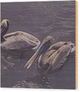 Male And Female Pelicans Wood Print