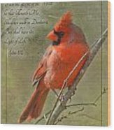 Male Cardinal On Twigs With Bible Verse Wood Print