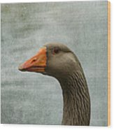 Male Graylag Goose Profile Wood Print by Denyse Duhaime