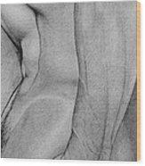 Male Nude 2 Wood Print