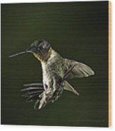 Male Ruby Throat Humming Bird Wood Print