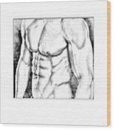 Male Torso #1 Wood Print