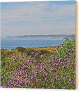Malibu Wood Print