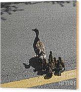 Mallard Crossing 3 Wood Print