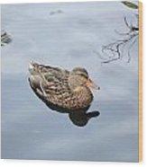 Mallard Duck Smile Wood Print