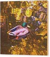 Mallard Duck On Pond 1 Wood Print