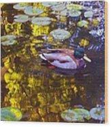 Mallard Duck On Pond 2 Wood Print