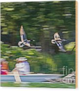 Mallard Flyover Wood Print