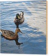 Mallards Lake Hopatcong Nj Wood Print