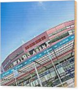 Malmo Arena 01 Wood Print