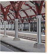 Malmo Train Station Wood Print
