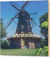 Malmo Windmill Wood Print
