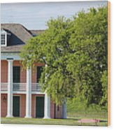 Malus Beauregard House Wood Print