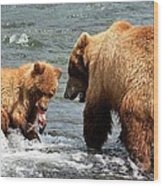 Mama And Baby Grizzly Bear At The Falls Wood Print