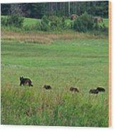 Mama Bear And 4 Cubs Wood Print