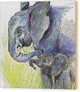 Mama Elephant And Calf Wood Print