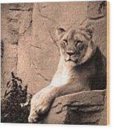Mama Lion Wood Print
