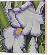 Mama's Favorite Iris Wood Print