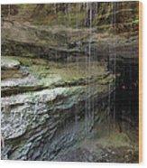 Mammoth Cave Entrance Wood Print