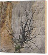 Mammoth Formation  #0290 Wood Print