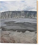 Mammoth Hot Spring Landscape Wood Print