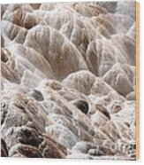 Mammoth Hot Springs Closeup Wood Print