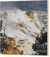 Mammoth Springs Yellowstone Steam Rising Wood Print