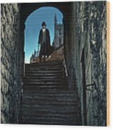 Man At The Top Of The Steps Wood Print