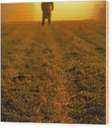 Man In Field At Sunset Wood Print