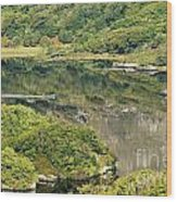 Man In Small Fishing Boat Travelling On Upper Lake Of Killarney National Park County Kerry Ireland Wood Print