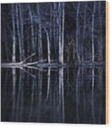 Man In Woods By River Wood Print