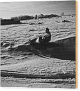 man on snowmobile crossing frozen fields in rural Forget Saskatchewan Canada Wood Print