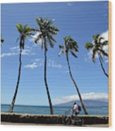 Man Riding Bicycle Beside Palm Trees Wood Print