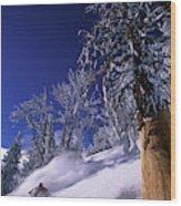 Man Skiing Through Trees In Fresh Wood Print