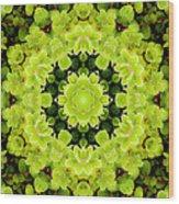 Manadala97 Wood Print