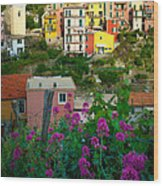 Manarola Flowers And Houses Wood Print