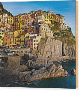 Manarola Wood Print by Inge Johnsson